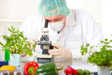 Food Testing Laboratories